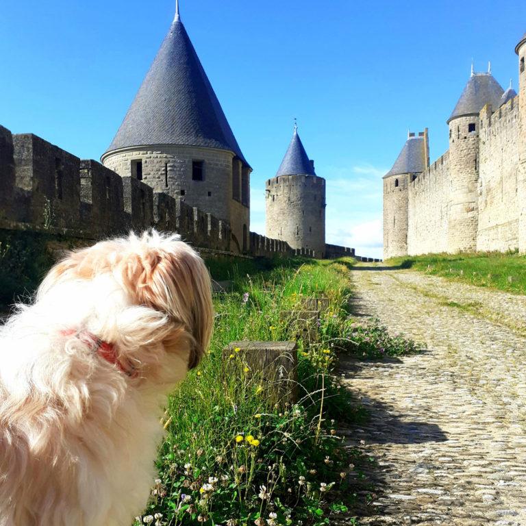 Jane Heyes Art Peintre Carcassonne Artist Castle Morris inspiration