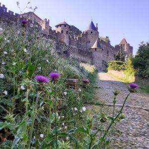 Jane Heyes Art Peintre Carcassonne Artist Spring inspiration